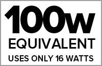 100 Watt Equivalent